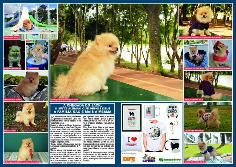 Revista-Marco---FINAL-2222222233