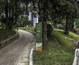 Curitiba ganha um jardim com araucárias preservadas